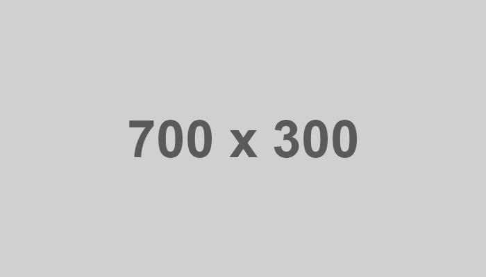 placeholder-700-300